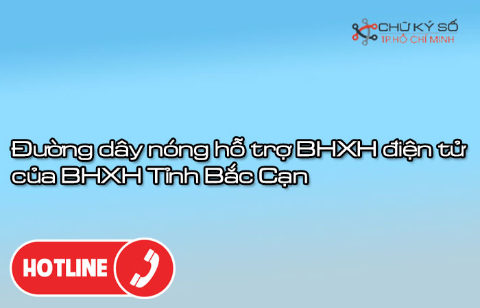 Duong-day-nong-ho-tro-bhxh-dien-tu-cua-bhxh-tinh-bac-can-1