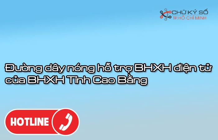 Duong-day-nong-ho-tro-bhxh-dien-tu-cua-bhxh-tinh-cao-bang-1